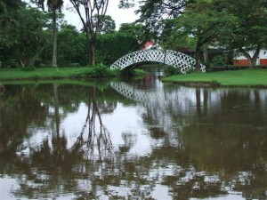One of the 'kissing bridges' in the Botanical Gardens