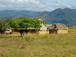 Amerindian houses in the Rupununi Region. The Rupununi Mountain Range is visible in the background