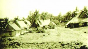 Indian Cottages