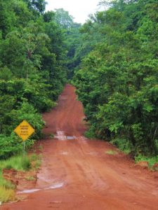The road rises and falls through the heart of the country (http://newbohemians.net/georgetown-guyana-and-other-thoughts)
