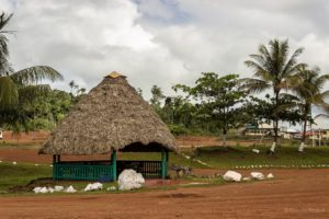 """At 58 Miles, (popularly referred to as """"58-mile"""") a small village along Mabura Road – 58 miles from Linden is a stopover for travellers along the Georgetown-Lethem road (Photo courtesy Girendra Persaud, Gxmedia)"""
