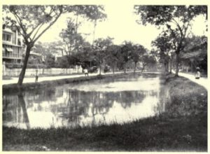 Carmichael Street, Georgetown (no date): Large, central canal filled with water and stocked with fish