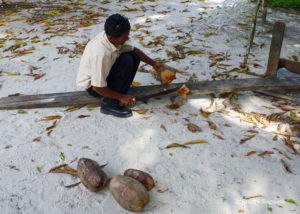 Cleaning the outer layer of the coconut