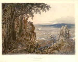 """'The Comuti or Taqulare Rock, on the River Essequibo'. From Schomburgk's """"Twelve Views in the Interior of Guiana""""; a series of views of Guiana by Charles Bentley, executed as illustrations for Robert Schomburgk's magnificent work on the region."""